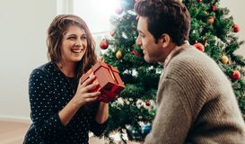 Young couple celebrating Christmas at home. Stock Photography