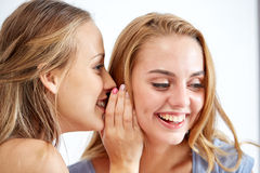 Happy young women whispering gossip at home Stock Photos
