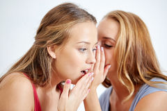 Happy young women whispering gossip at home Royalty Free Stock Photos