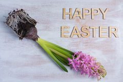 Happye Easter Fotografia Stock