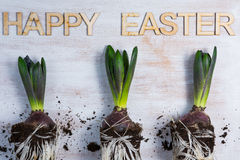 Happye Easter Fotografia Royalty Free