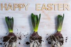 Happye Pâques Photographie stock libre de droits