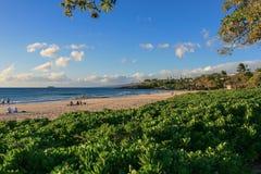 Hapuna strand, Hawaii Royaltyfria Foton