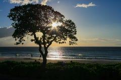 Hapuna strand, Hawaii Arkivfoton
