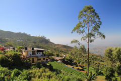 Haputale village Stock Images