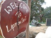 Haputhale Sri Lanka de feuille de Liptions image libre de droits