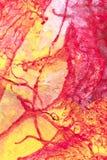 Haqndpainted Abstracte Gouache Royalty-vrije Stock Afbeeldingen