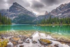 hara湖o Yoho国家公园 加拿大 库存图片