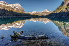 ` Hara Reflection del lago O Fotografía de archivo libre de regalías