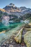 ` Hara Scenic Shoreline del lago O Fotos de archivo libres de regalías