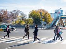 Harajuku, Japon - en décembre 2016 : voyageur et peop japonais Photographie stock libre de droits