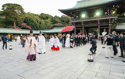 HARAJUKU,TOKYO - NOV 20: Celebration of a typical wedding ceremo Stock Photography