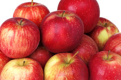 Haralson Apples stock image