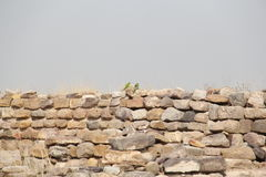 Harappan Civilization Royalty Free Stock Images