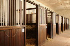 Haras National du Pin in Normandie Stock Photos