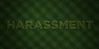 HARASSMENT - fresh Grass letters with flowers and dandelions - 3D rendered royalty free stock image Royalty Free Stock Photography
