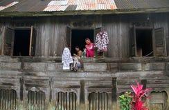 Harauvallei in het Westen Sumatra, Indonesië stock foto