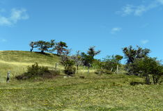 Harberton estate is the oldest farm of Tierra del Fuego and an important historical monument of the region. Stock Photos