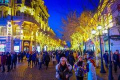 Harbin, China - 9 de febrero de 2017: Vista escénica de la calle peatonal adornada con las luces de la Navidad hermosas en la ciu Fotos de archivo