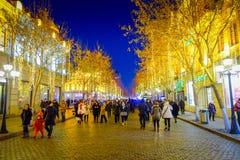 Harbin, China - 9 de febrero de 2017: Vista escénica de la calle peatonal adornada con las luces de la Navidad hermosas en la ciu Fotografía de archivo