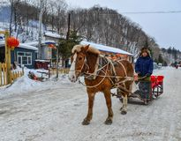 Winter sleigh rides pulled by horse in snow stock photo