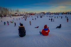Harbin Kina - Februari 9, 2017: Okända besökare som har gyckel i Harbin den internationella is- och snöskulpturen Royaltyfria Bilder