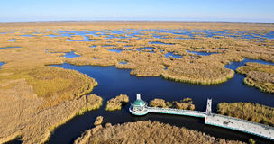 Harbin Wetlands. Eastphoto, tukuchina,  Harbin Wetlands, nature beauty Royalty Free Stock Photo