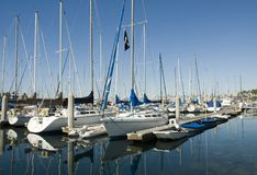 At harbor. A collection of sailboats and yachts in a harbor Royalty Free Stock Image