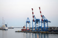 In the harbor. Big cranes in the harbor of Genoa, italy Stock Images