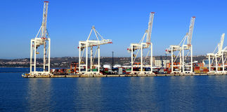 Harbor activity Stock Images