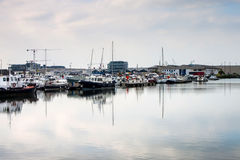 Harbor in Antwerp Royalty Free Stock Photo