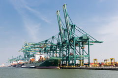 Harbor of Antwerp with cargo ships moored at quay with big cranes Royalty Free Stock Photography