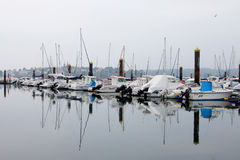 Harbor with boats Royalty Free Stock Photo