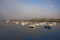 Harbor in Bretagne Stock Image