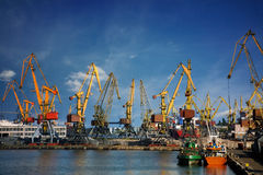 Harbor cranes. Over blue sky background Royalty Free Stock Images