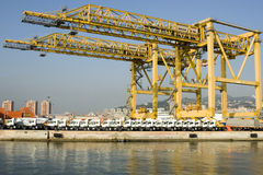 Harbor cranes and new trucks royalty free stock photos