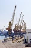 Harbor cranes in sea cargo port Stock Image