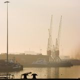 Harbor with cranes - square cropped Royalty Free Stock Photography