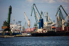 Harbor cranes working Royalty Free Stock Photography