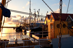 Harbor with fishing ships, Zoutkapm, Netherlands Royalty Free Stock Images