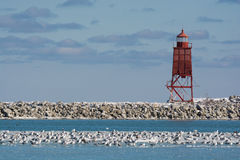 Harbor Light in Winter royalty free stock image