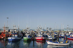 Harbor of Los Cristianos, Tenerife, Spain - April 12, 2017. The harbor boasts ferry terminals, moorings for about 200 fishing, sailing boats and yachts, dry Royalty Free Stock Images