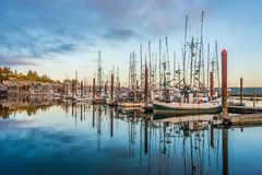 Harbor mornings Royalty Free Stock Photos