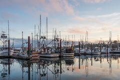 Harbor mornings Royalty Free Stock Images