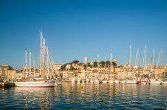 Harbor and old town of Cannes Royalty Free Stock Photo