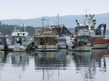 Harbor scenery in Croatia Stock Photography