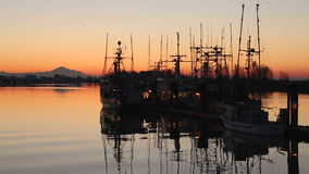 Harbor Sunrise, Steveston stock video footage