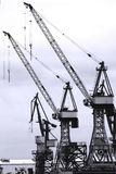 Harbour cranes. Two harbour cranes in the port of hamburg Stock Photography