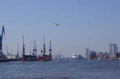 Harbour of Hamburg Stock Photo