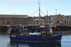 Harbour and inshore fishing fleet in Kirkwall, Mainland island, Orkney Scotland. Kirkwall is the largest settlement and capital of Orkney, an archipelago in the Stock Photos